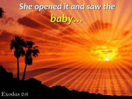 Exodus 2 6 Opened It And Saw The Baby Powerpoint Church Sermon