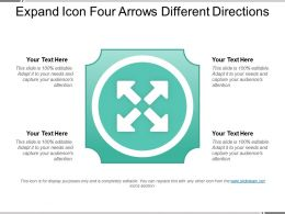 Expand Icon Four Arrows Different Directions