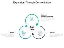 Expansion Through Concentration Ppt Powerpoint Presentation File Slideshow Cpb