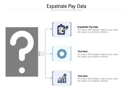 Expatriate Pay Data Ppt Powerpoint Presentation Slides Infographics Cpb