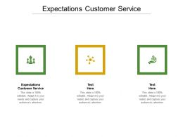 Expectations Customer Service Ppt Powerpoint Presentation Summary Slide Portrait Cpb