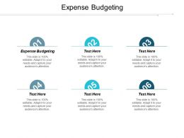 Expense Budgeting Ppt Powerpoint Presentation Portfolio Infographic Template Cpb