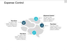 Expense Control Ppt Powerpoint Presentation Ideas Skills Cpb
