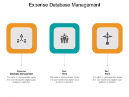 Expense Database Management Ppt Powerpoint Presentation File Graphics Cpb