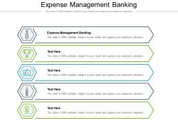 Expense Management Banking Ppt Powerpoint Presentation Ideas Background Cpb