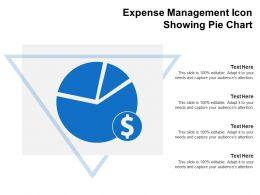 Expense Management Icon Showing Pie Chart