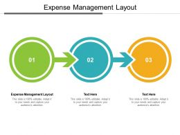 Expense Management Layout Ppt Powerpoint Presentation Outline Examples Cpb