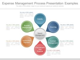 Expense Management Process Presentation Examples