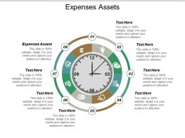 Expenses Assets Ppt Powerpoint Presentation Gallery Design Inspiration Cpb