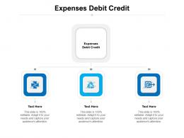 Expenses Debit Credit Ppt Powerpoint Presentation Styles Templates Cpb