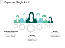 Expenses Single Audit Ppt Powerpoint Presentation Gallery Summary Cpb