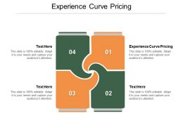 Experience Curve Pricing Ppt Powerpoint Presentation Portfolio Inspiration Cpb
