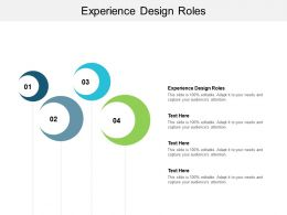 Experience Design Roles Ppt Powerpoint Presentation Icon Layout Cpb