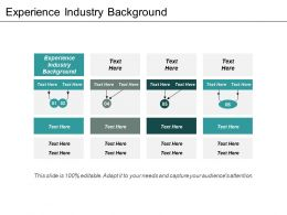 Experience Industry Background Ppt Powerpoint Presentation Gallery Portrait Cpb