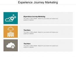 Experience Journey Marketing Ppt Powerpoint Presentation Outline Ideas Cpb