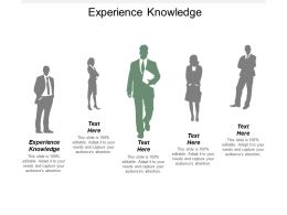 Experience Knowledge Ppt Powerpoint Presentation Gallery Graphics Cpb