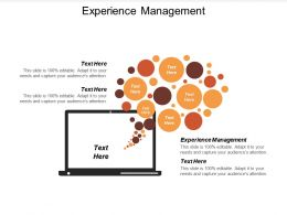Experience Management Ppt Powerpoint Presentation Ideas Maker Cpb