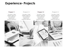 Experience Projects Agenda D165 Ppt Powerpoint Presentation File Portrait