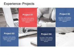 Experience Projects Business Ppt Powerpoint Presentation Outline Shapes