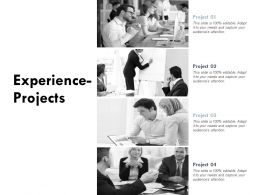 Experience Projects Our Team Agenda Ppt Powerpoint Presentation Show Skills