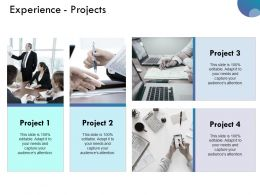 Experience Projects Ppt Examples Slides Presentation Deck