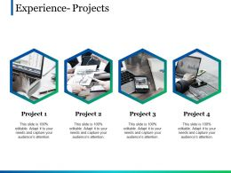 Experience Projects Ppt Pictures Show