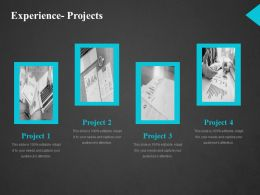 Experience Projects Ppt Rules