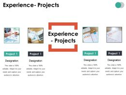 Experience Projects Ppt Summary Portfolio