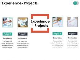 Experience Projects Ppt Summary Portfolio