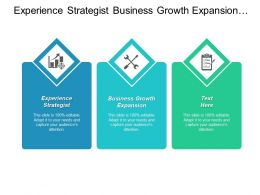 Experience Strategist Business Growth Expansion Culture Engagement Strategy Cpb