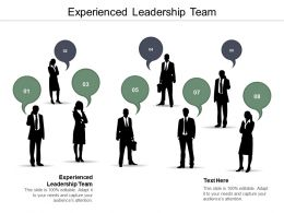 Experienced Leadership Team Ppt Powerpoint Presentation Infographic Template Example Cpb