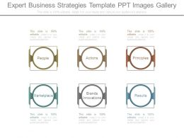 Expert Business Strategies Template Ppt Images Gallery