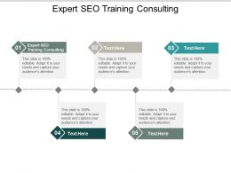 Expert SEO Training Consulting Ppt Powerpoint Presentation Layouts Graphics Design Cpb