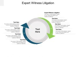 Expert Witness Litigation Ppt Powerpoint Presentation Show Portrait Cpb