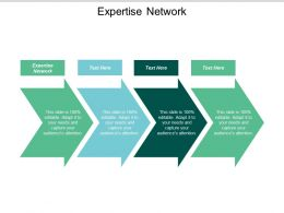Expertise Network Ppt Powerpoint Presentation Gallery Design Ideas Cpb