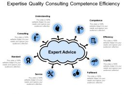 Expertise Quality Consulting Competence Efficiency
