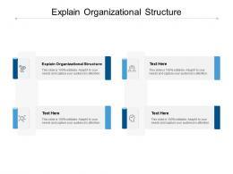 Explain Organizational Structure Ppt Powerpoint Presentation Portfolio Design Ideas Cpb