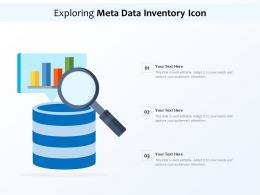 Exploring Meta Data Inventory Icon