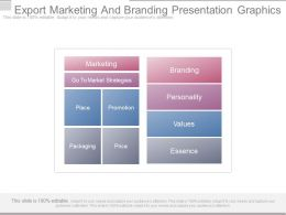 Export Marketing And Branding Presentation Graphics