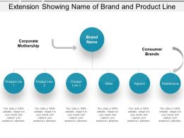 Extension Showing Name Of Brand And Product Line