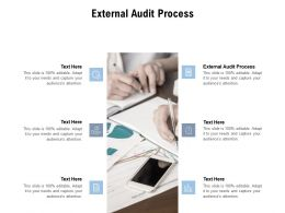 External Audit Process Ppt Powerpoint Presentation Ideas Good Cpb