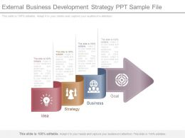 External Business Development Strategy Ppt Sample File