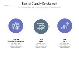 External Capacity Development Ppt Powerpoint Presentation Pictures Samples Cpb