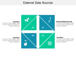 External Data Sources Ppt Powerpoint Presentation Infographic Template Show Cpb