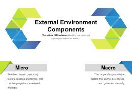External Environment Components Ppt Examples Slides