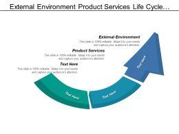 External Environment Product Services Life Cycle Portfolio Matrix