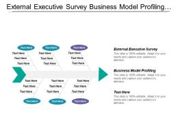 External Executive Survey Business Model Profiling Expert Survey
