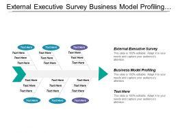 External Executive Survey Business Model Profiling Expert Survey