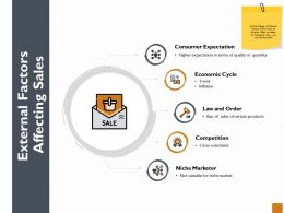 External Factors Affecting Sales Ppt Powerpoint Presentation Model Structure