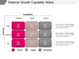 External Growth Capability Matrix Powerpoint Guide